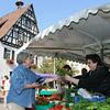 Marktstand mit Rathaus I im Hintergrund