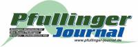 Logo_Sponsoring_2013