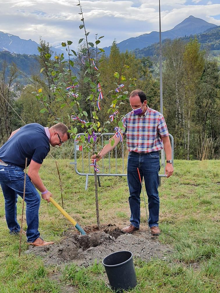Während Bürgermeister Stefan Wörner mit einer Schaufel das Loch zuschüttet, in dem der zu pflanzende Zwetschgenbaum steht, hält sein Amtskollege Raphaël Castéra den Baum am Stamm aufrecht.