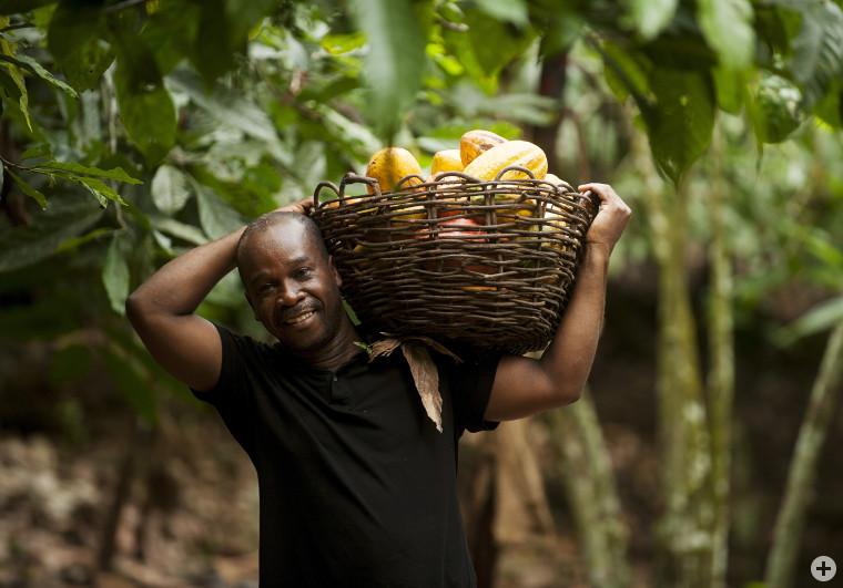 Kakaobauer - Quelle: TransFair e.V.